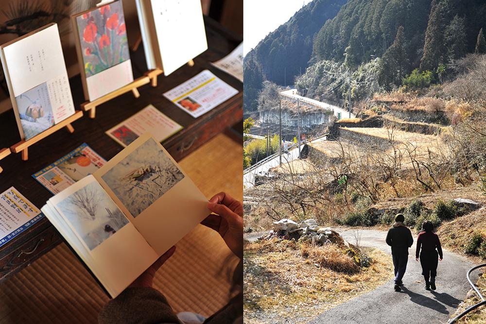(右)段々畑(左)本イメージ