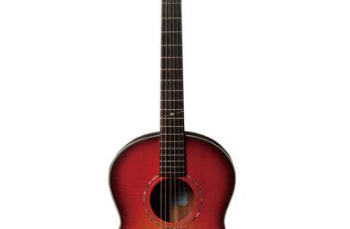 ヤイリギターのギター
