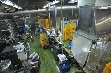 関牛乳の工場