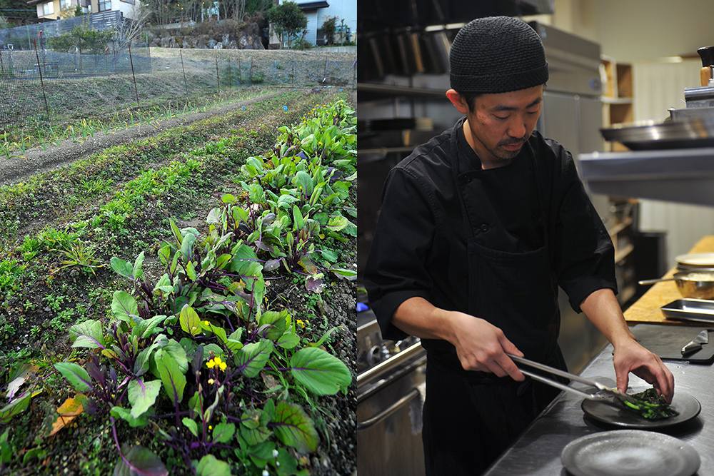 hoshizumi畑、調理風景