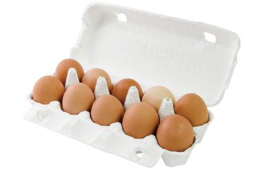 寺町畑の卵